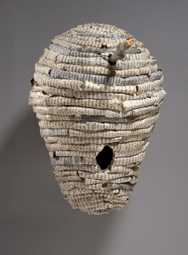 Wasp nest by Holly Senn. Courtesy photo